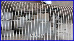 Homart (Sears) Cooler Attic Large Industrial Metal Exhaust Fan Works